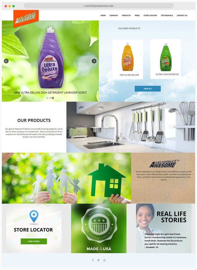 web cleaning company designer