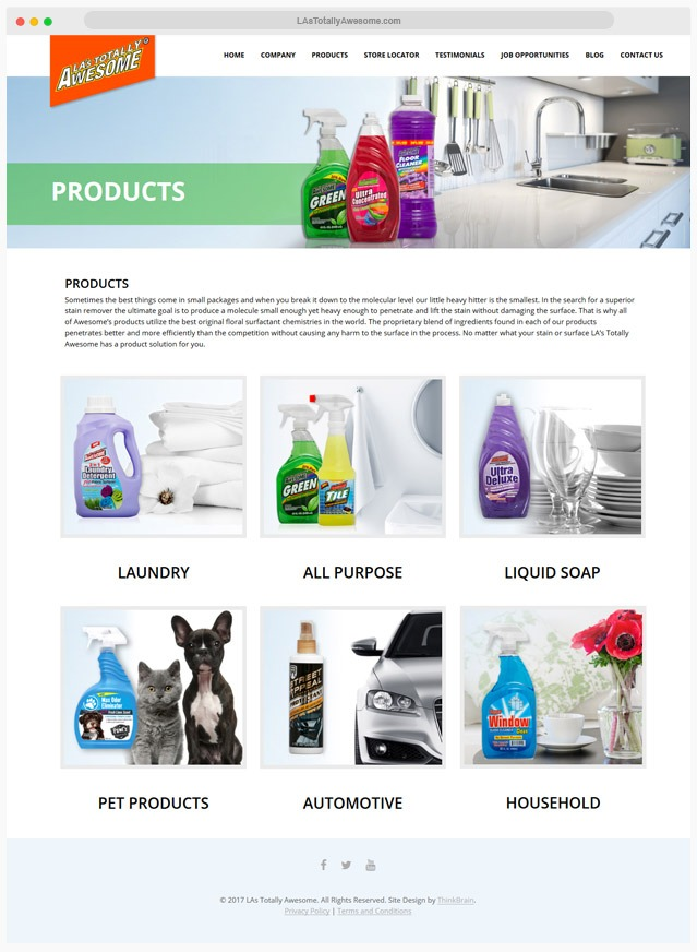 Cleaning Products Web Designer