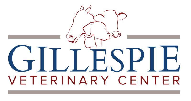 Veterinary Center Logo Design Company