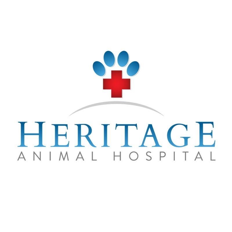 Animal Hospital Branding Company
