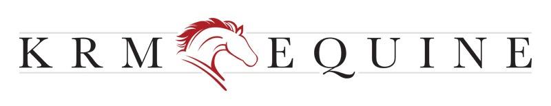 Equine Logo Design Company