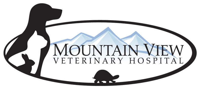 Veterinary Hospital Logo Design Company