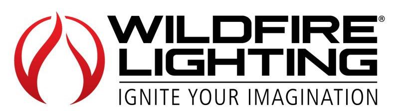 Lighting Logo Design